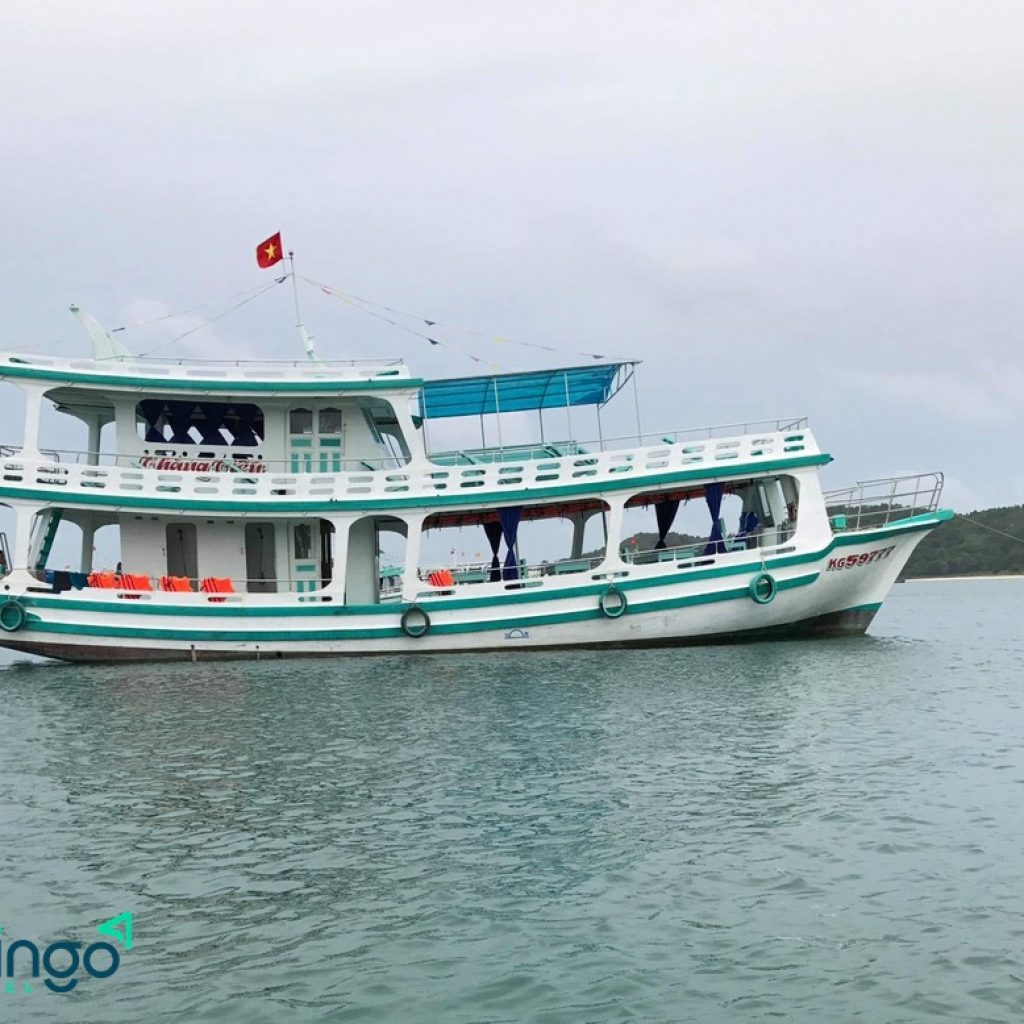 tour lặn ngắm san hô bằng tàu du lịch