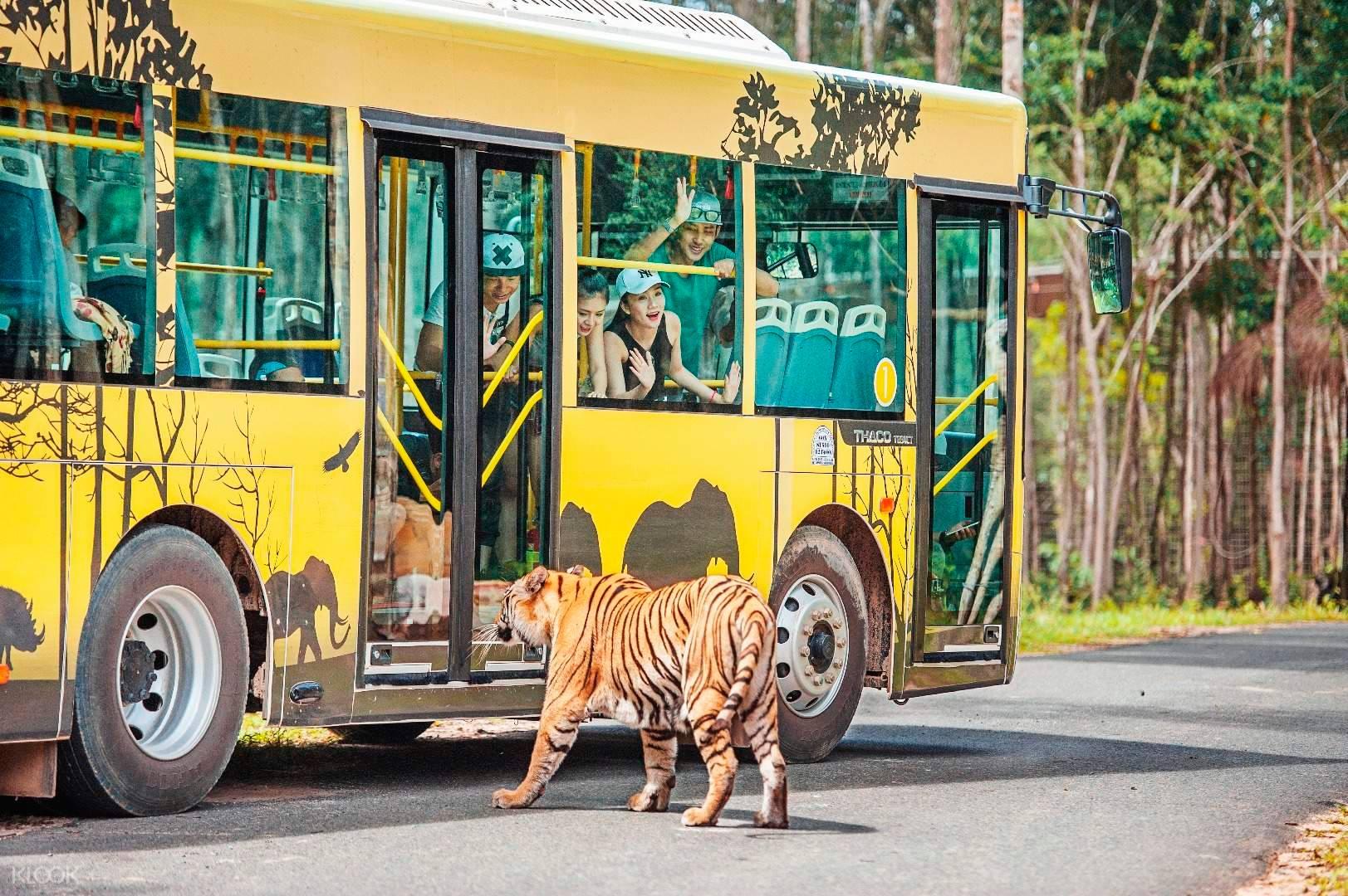 xe bus tham quan vinpearl safari Phú Quốc